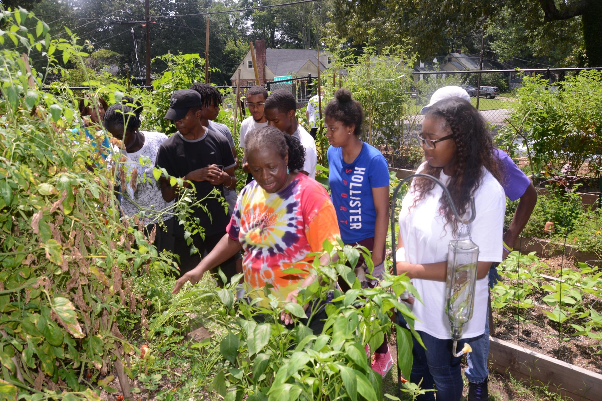 Councilmember Sheperd  explains gardening to youth