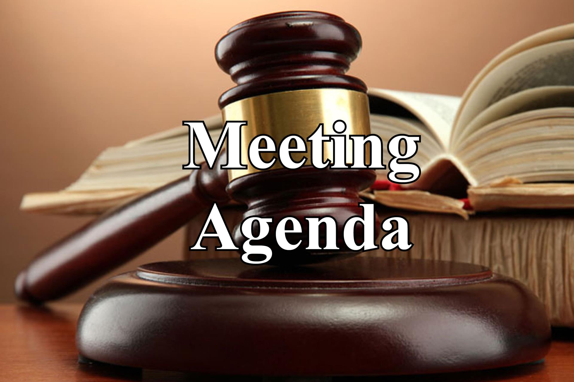 Meeting agenda icon